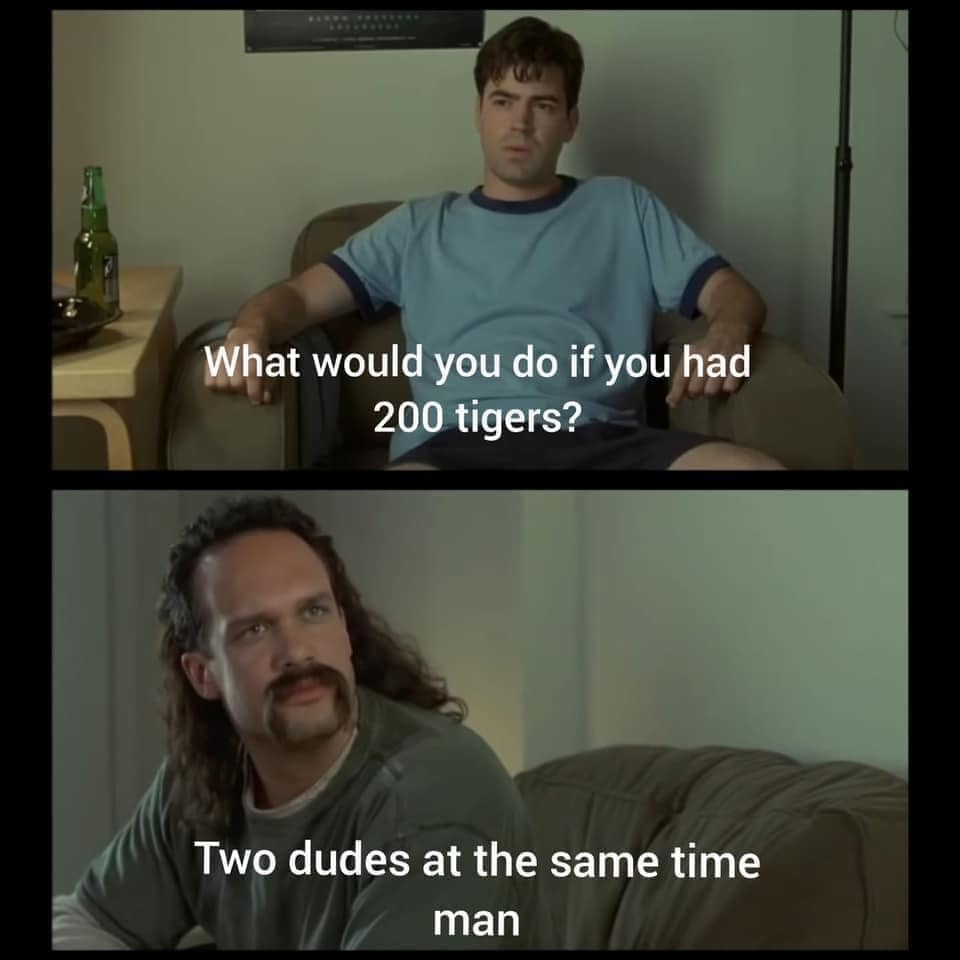 A Collection Of The Very Best Netflix S Tiger King Memes