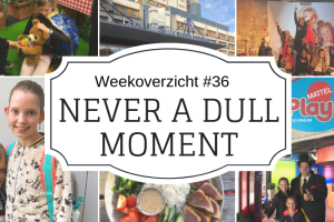 Never-a-Dull-Moment-week-36