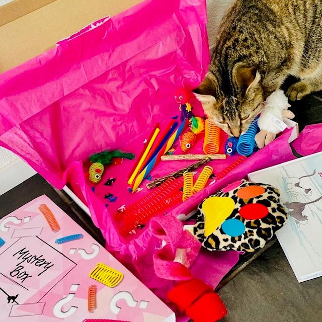 Mysterybox - kattenspeeltjes
