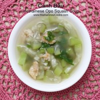 Vietnamese Opo Squash Soup - Canh Bau