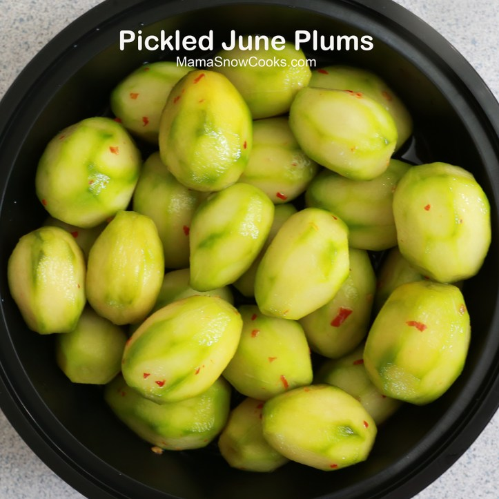 Pickled June Plums 091319 (13b)