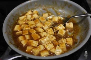 Braised Tofu 11019 (4)