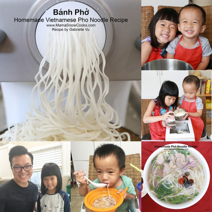 Homemade Pho Noodle 042320 Collage