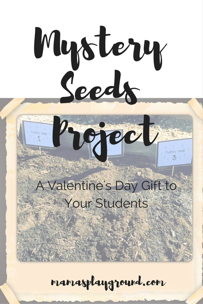 Mystery Seeds Project