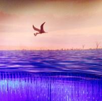 Pterosaurios, ni pájaros ni dinosaurios