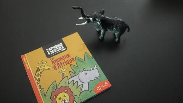 fleurus-editions