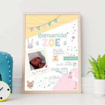 laminas personalizadas para nacimientos