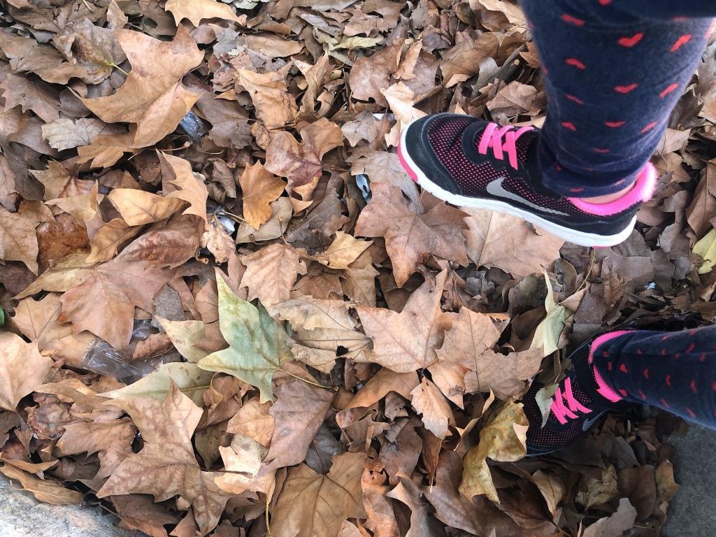 pisar hojas secas, actividades para hacer en otoño con niños