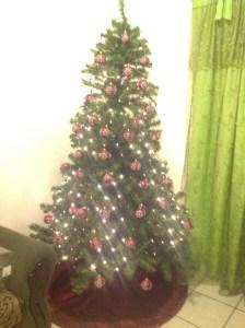 Y en nuestra tercera navidad juntos…