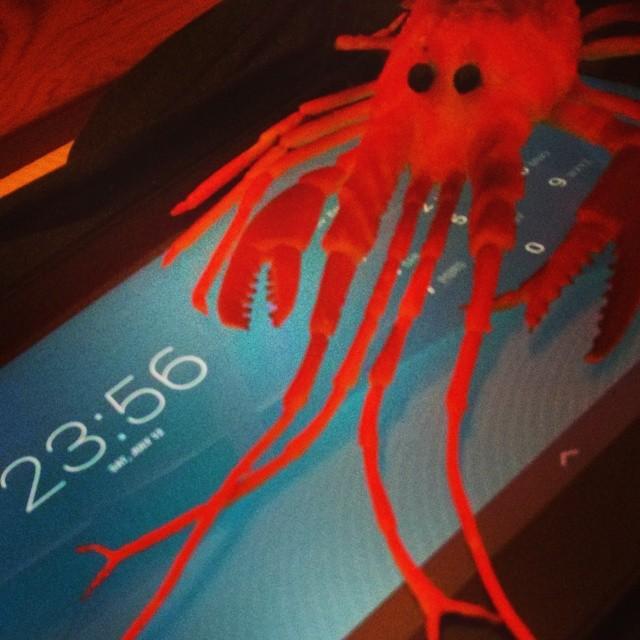 Red lobster attack!