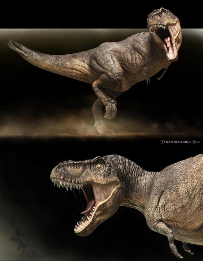 T-Rex by Vlad Konstantinov