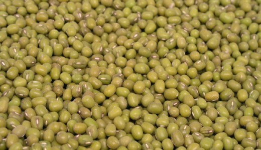 6月10日は緑豆の日。緑豆はよく食べるアレの種です