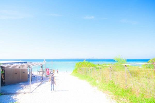 夏休みの画像