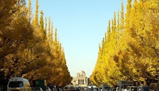 明治神宮外苑の紅葉の見頃といちょう祭り【2018年版】