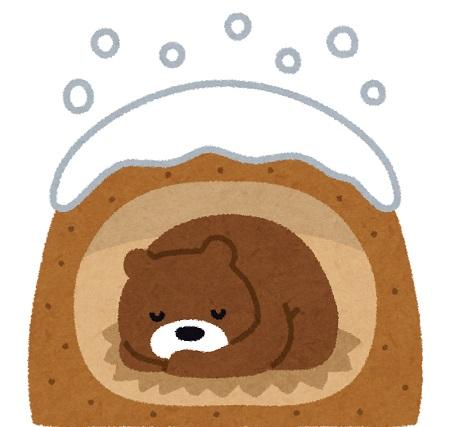 冬眠する熊