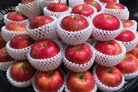 りんごは皮ごと食べるほうが栄養がある?農薬の心配は?
