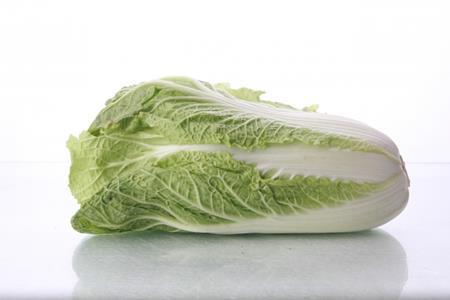白菜が腐る!こんな状態になったら食べてはいけない!