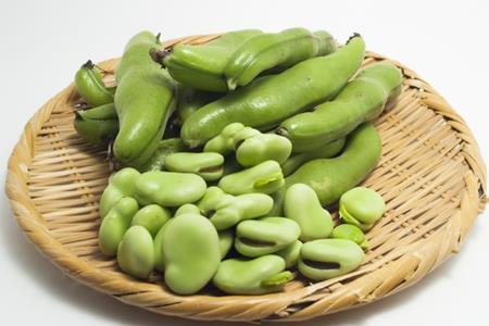 そら豆はどのぐらい日持ちする?冷凍保存はできるの?