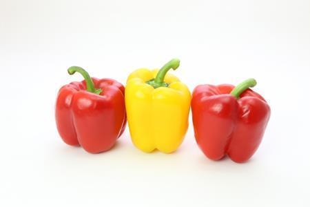 パプリカとピーマンって同じ野菜?違いはあるの?