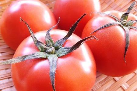 お弁当などでプチトマトのヘタは取るべき?食中毒の恐れがある?