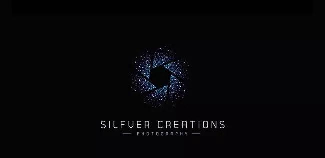 Silfver Creations - Inspiration logo designs #4