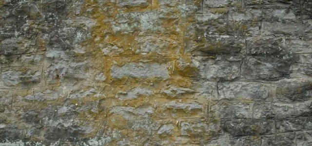 Stone Texture03 - +60 Free High Resolution Stone and Rock Textures