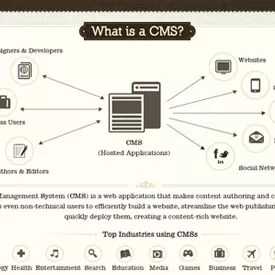 cms infographic - Infographic: Choosing the Right CMS For Your Project