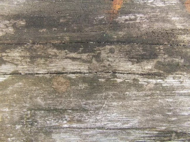 Old Wood by dazzle textures e1359620522795 - 200+ Free High Quality Grunge Wood Texture
