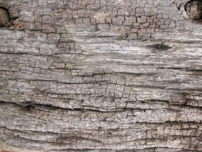 Old Wood texture 3 by Tigg stock e1359554299262 - 200+ Free High Quality Grunge Wood Texture