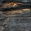 dirty wood 2 - 200+ Free High Quality Grungy Dirty Wood Textures