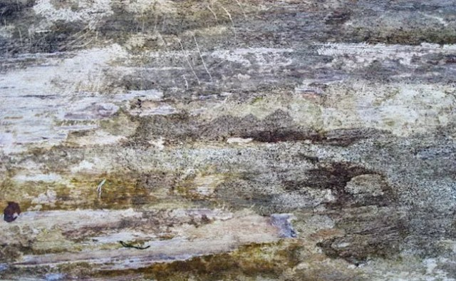 dirty wood 5 - 200+ Free High Quality Grungy Dirty Wood Textures