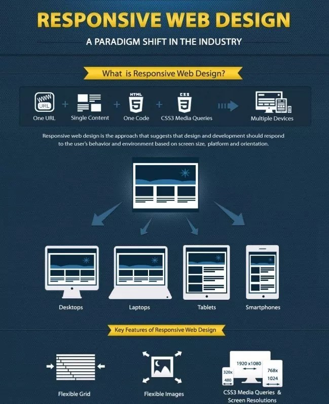 responsive web design infographic e1360150942637 - Infographic: Responsive Web Design