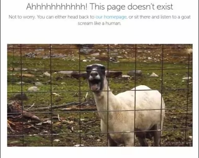 Bluegg_Awesome_Funny_Creative_Error_404_Page