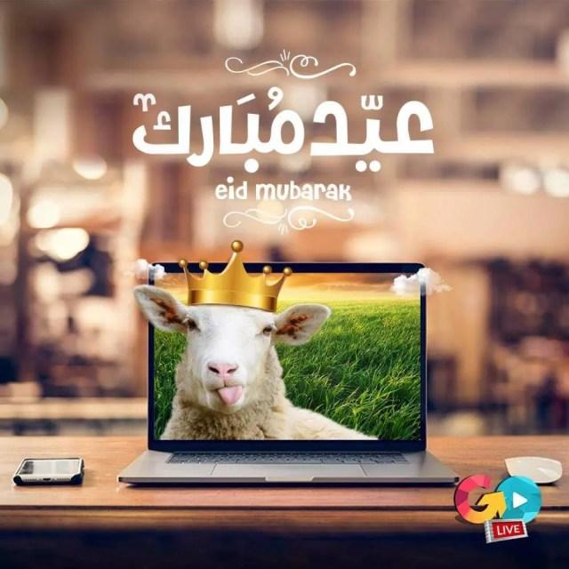 01356d56589087.59b4f296532e0 e1534252796603 - Eid Al Adha Al Mubarak - Amazing Designs For Inspiration