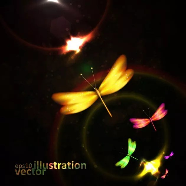 illustration l - Colorful dragonfly Vector