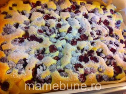 prăjitură_de_vară