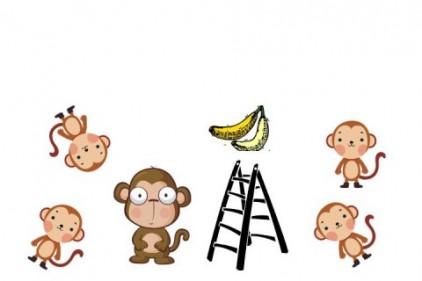 experiment_maimuțe_banana