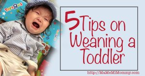 5 Tips on Weaning a Toddler