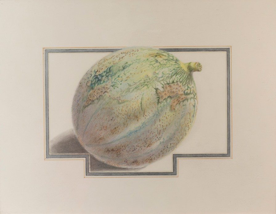 A colored pencil drawing of a green melon