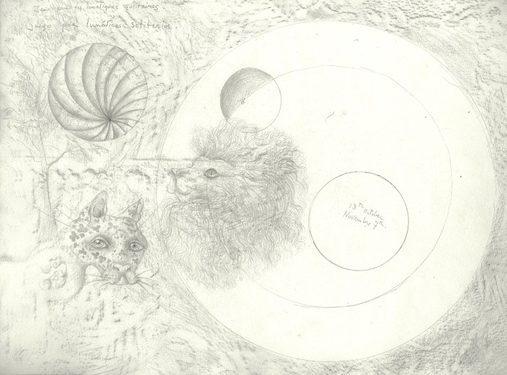 An intricate pencil drawing of a lion's head, a tiger's head, and spherical forms, with the artist's notations.