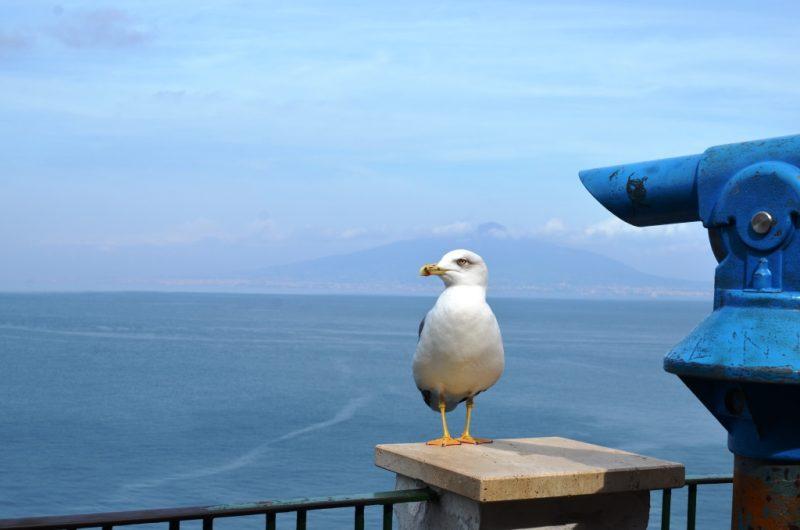 Italy Road Trip - Amalfi Coast like a Local