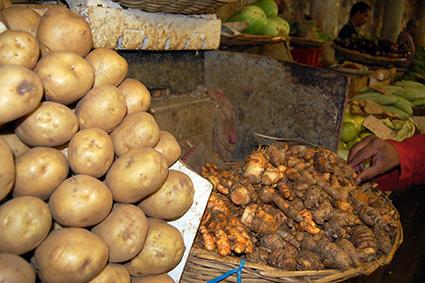 Alternativen zur Kartoffel