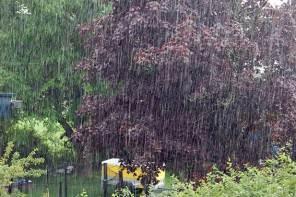 Regenwetter? Wir lesen gute Fantasy für Kinder