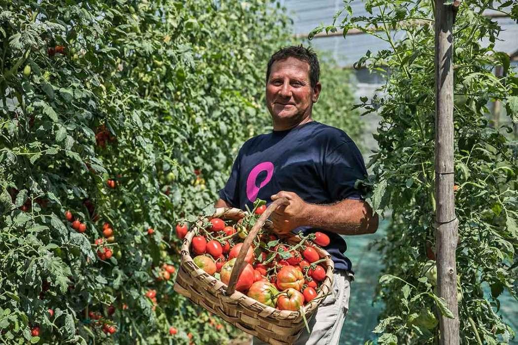 Umweltbewusst im Urlaub mit eigenem Gemüseanbau und Zero Waste Hotels
