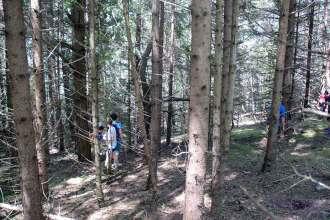 Geocaching Kindergeburtstag im Wald mit Wanderung