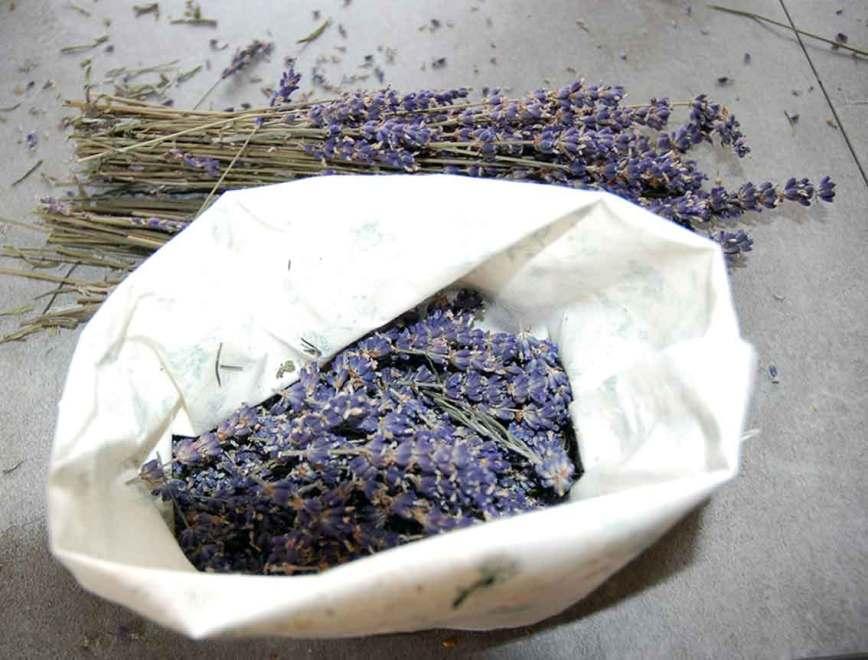 Lavendelduftsäckchen selber machen