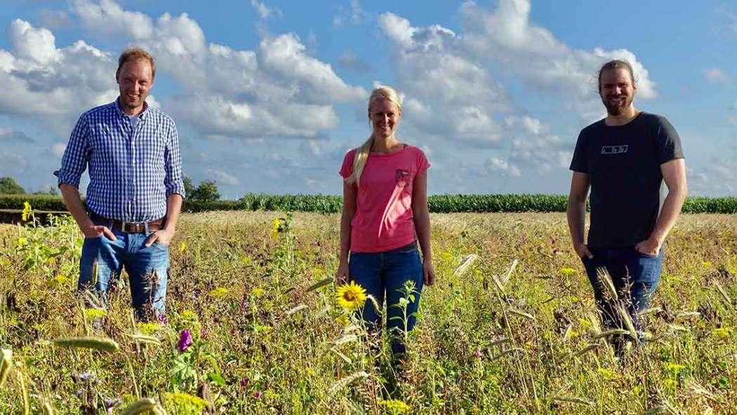 Blumen vom Feld als Blühstreifen verschenken mit Wilde Pracht