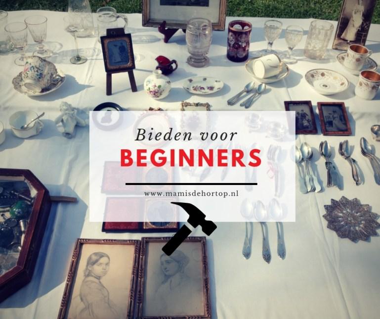 Bieden voor beginners op vakantieveilingen blog bestaat 3 jaar