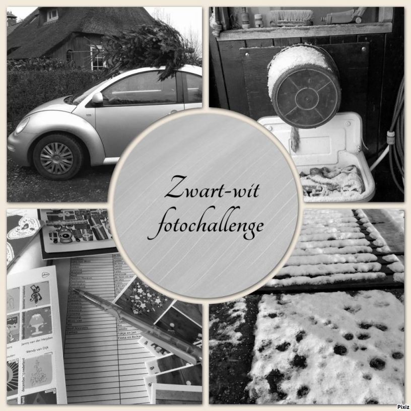 zwart-wit foto's