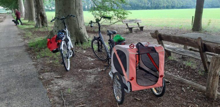 fietsen met de hondenfietskar